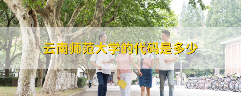 云南师范大学的代码是多少
