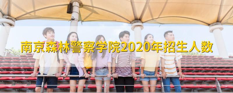 南京森林警察学院2020年招生人数