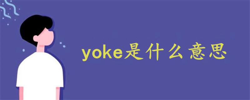 yoke是什么意思