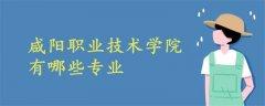 咸阳职业技术学院有哪些专业